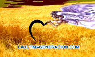 La cosecha apocalipsis biblia