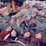 Terremoto en Turquia 2010 videos