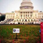 Cientos de cruces recuerdan en EE.UU. los bebés abortados