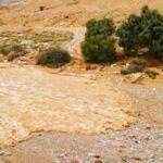 Río renace en Israel tras años de sequía