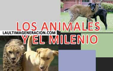 milenio animales